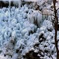 写真: 芦ヶ久保 氷柱