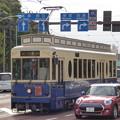 写真: 秋の明治通りを走るレトロ調電車