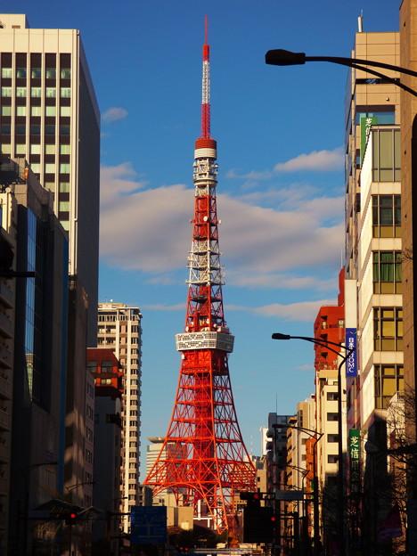 ビルの谷間の東京タワー
