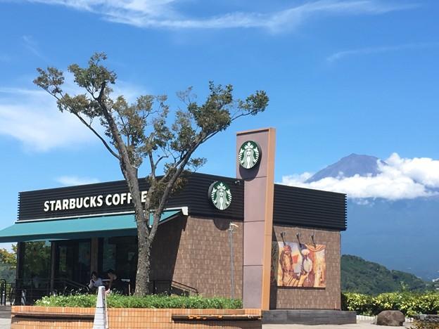 富士見なスタバ