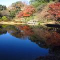 二ノ丸庭園