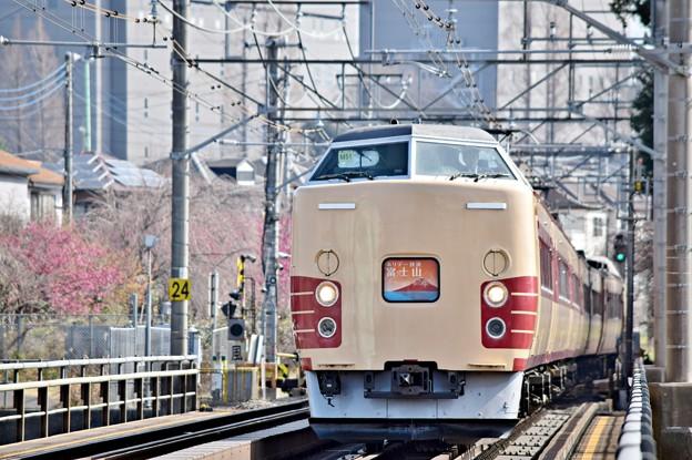 Photos: 春満載の行楽列車3