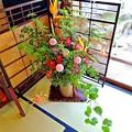 写真: 奥座敷の花