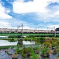 写真: 夏空鉄橋