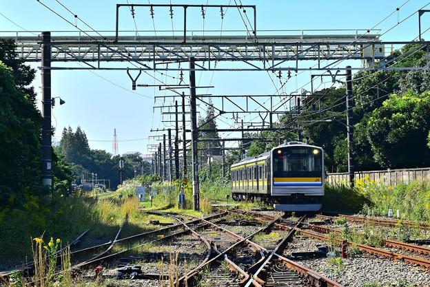 運河行き列車