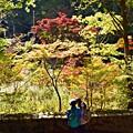 高尾山の秋景色(3)