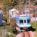 Photos: 沿線の秋景色(1)