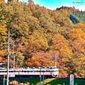 沿線の秋景色(2)