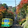 Photos: 天空の紅葉へ(1)