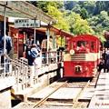 写真: ミニ列車