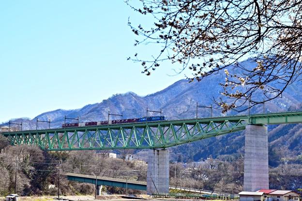 Photos: 春色沿線2