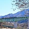 写真: 春色沿線2