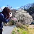 春のスマホガール