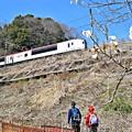Photos: 春色沿線5