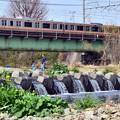 写真: 春色沿線11