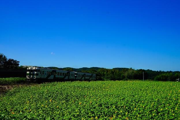 Photos: キハ40形@小塙~滝