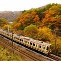 Photos: 紅葉シーズンの諏訪峡を行く107系