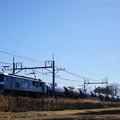 Photos: EF210-142+タキ@ヒガハス