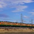 Photos: 534M 115系@ヤギシブ