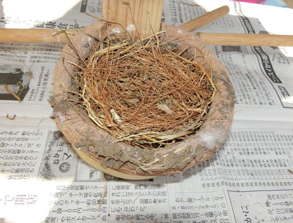 写真: 藁敷きかえ