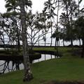 Photos: ハワイ島の公園