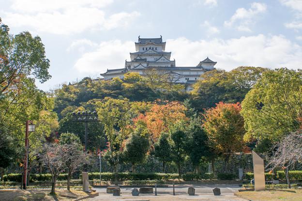 姫路城十景【No5_シロトピア記念公園】2