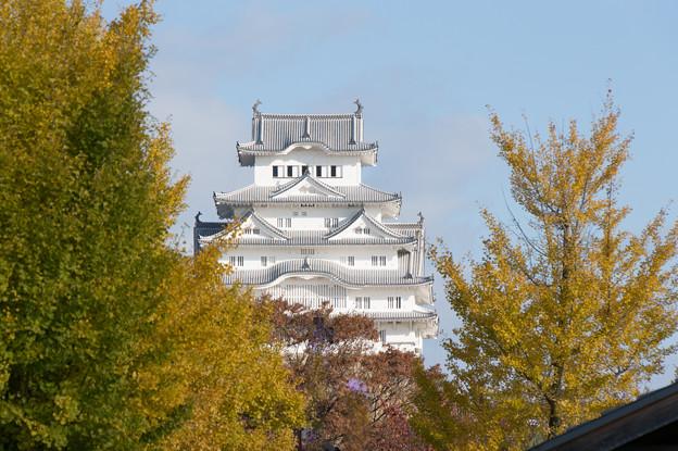 姫路城【大手前公園から】