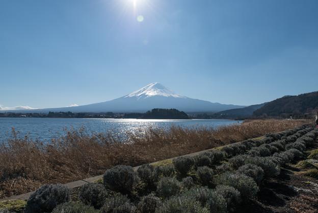 富士山【河口湖からの眺め】2