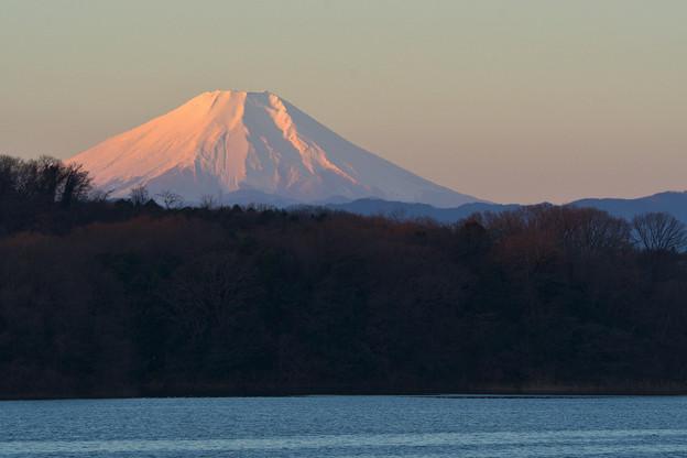 狭山湖からの初富士