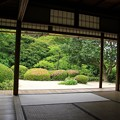 Photos: IMG_0352庭園
