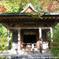 Photos: IMG_9692圓成寺・護摩堂