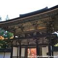 Photos: IMG_9694圓成寺・楼門(重要文化財)
