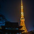 Photos: 照らすタワー