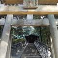 東福寺鎮守 五社成就宮 P1110237