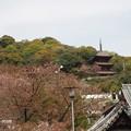 写真: 西國寺 P4120212