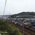 写真: 尾道 浄土寺 P4120274