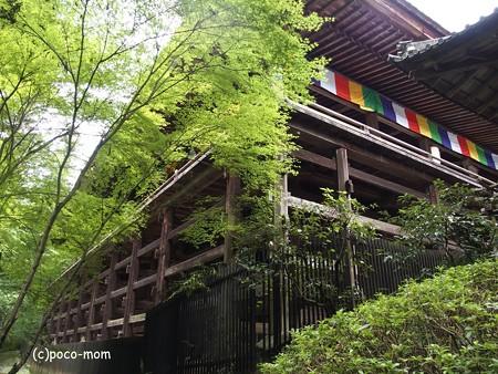 石山寺本堂 P8270378