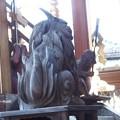 写真: 瀧尾神社 PA160543