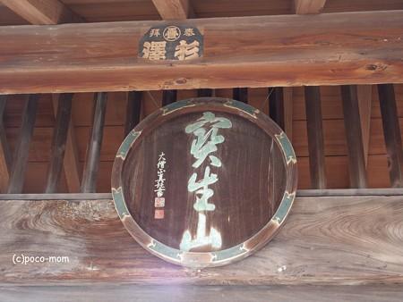 滋賀長浜 知善院 PA300018