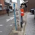 写真: 長浜知善院みち