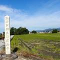 写真: 長浜 安楽寺 PA300044