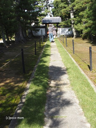 長浜 安楽寺 PA300050