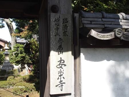 長浜 安楽寺 PA300051