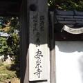写真: 長浜 安楽寺 PA300051
