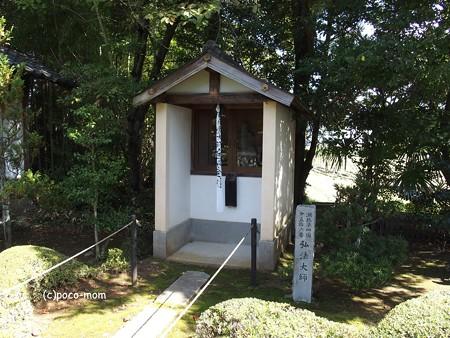 長浜 安楽寺 PA300053