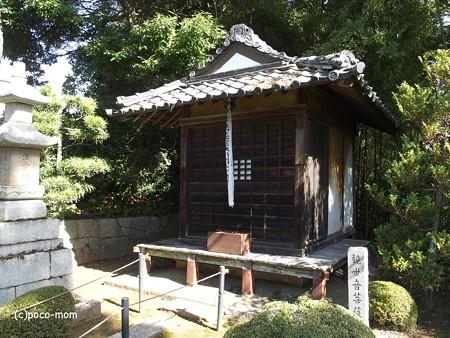 長浜 安楽寺 PA300054