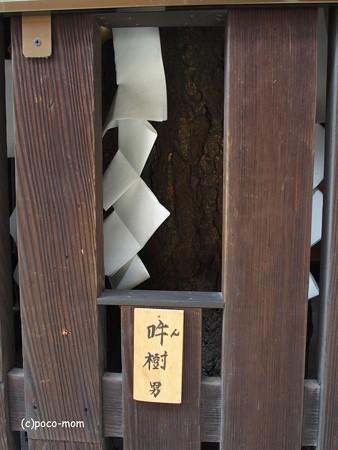 平等寺因幡堂 PB030290