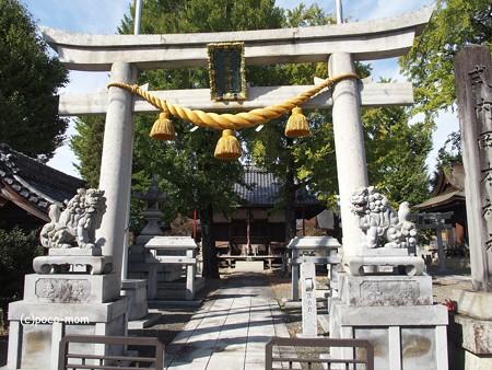 岡本神社・小谷丁野観音堂 PA300075