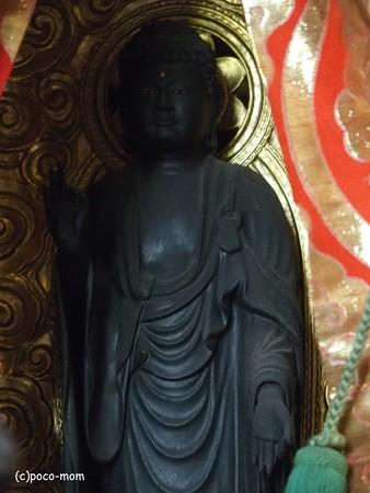 浄光寺 十一面観音 PA300164