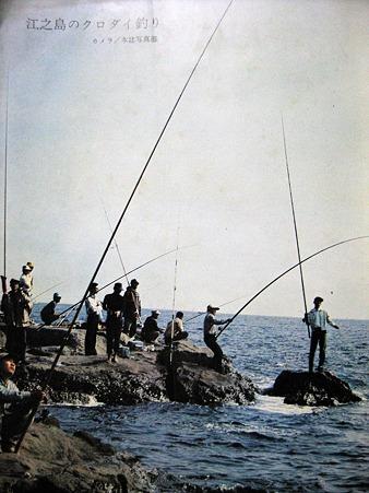 江ノ島のクロダイ釣り